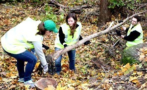 University of Notre Dame Students Remove Debris from the Bowman Creek in Ravina Park